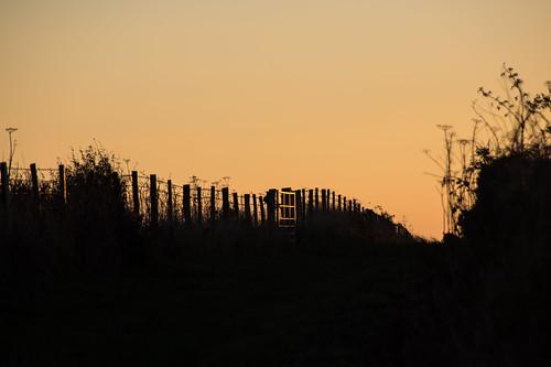 sunrise dawn daybreak sunup silhouettes fence gate hff
