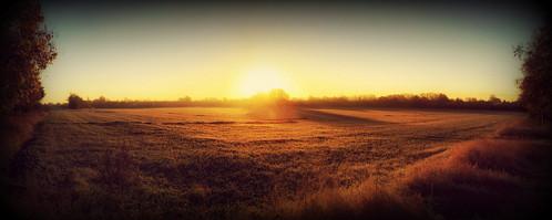 oxforshire radley autumn frost england sunrise goldenlight iphone6 sun