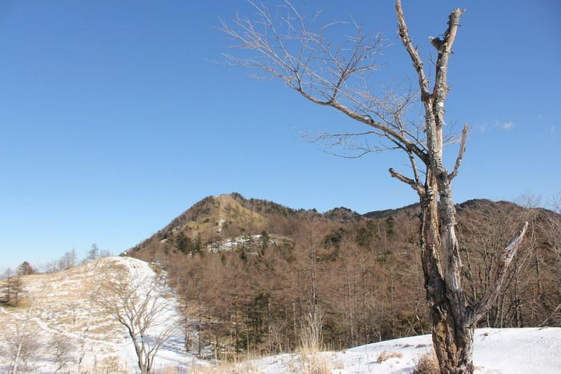 笠取山 12月