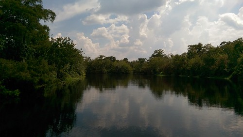 florida htconem8 oneography stjohnsriver river stream creek water outdoor watercourse rural landscape sky mobilephone htc