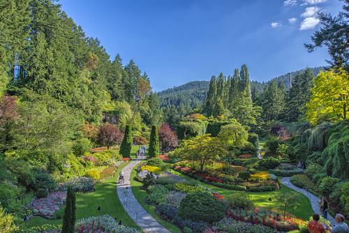 canada vancouver garden britishcolumbia victoria vancouverisland butchartgardens nikon1424 nikond610