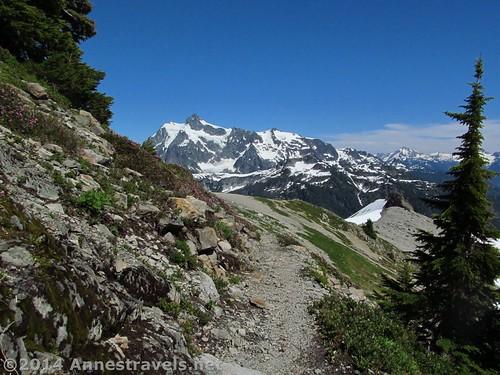 Mt. Shuksan from the Ptarmigan Ridge Trail, Mount Baker Wilderness, Washington
