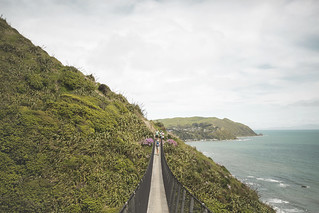 Paekakariki Escarpment Track Swing Bridge | by dan_walk