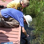 Tue, 07/01/2014 - 9:11am - Aquatic Biology Summer Day Camp