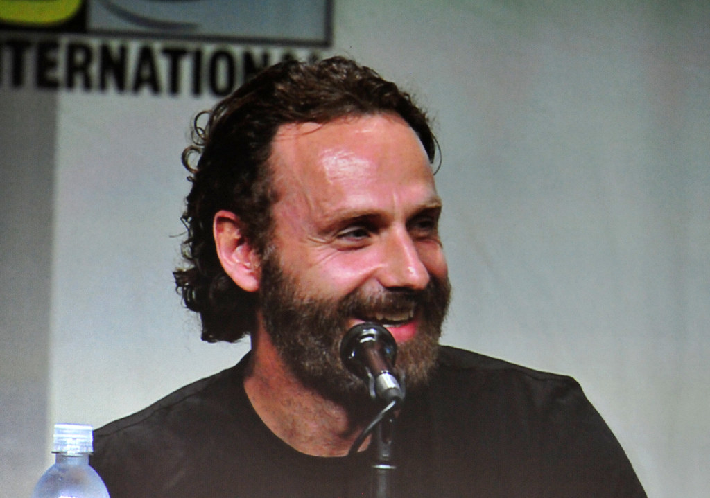 The Walking Dead panel - Andrew Lincoln aka Rick Grimes