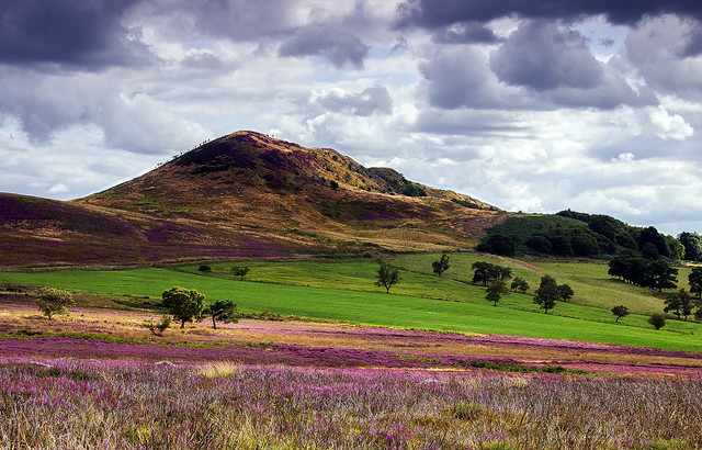 Hawnby Hill, North Yorkshire Moors, England. UK