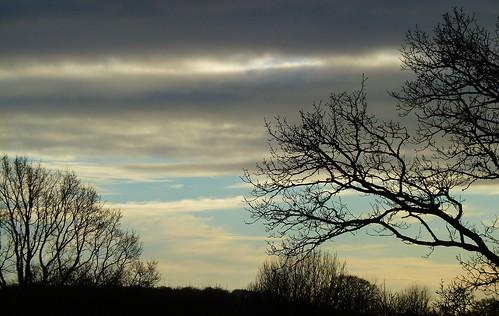 skyscape sky clouds trees motcombe dorset landscape