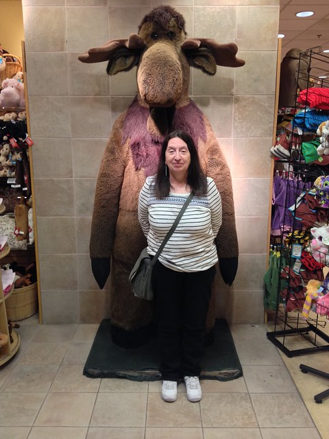 Elly with moose