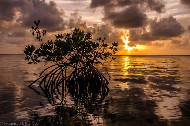 Sunset and Twilight
