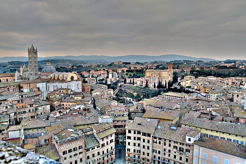 The Palio's overview
