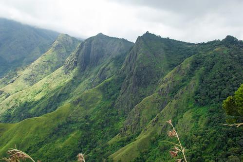 landscape kerala hillstation munnar canon550d southhillstations balasubramanian146 balapobi