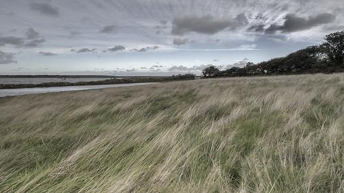 porlockweir weir porlock grass whispering landscape clouds outside outdoor somerset water sea ocean trees tree sky field