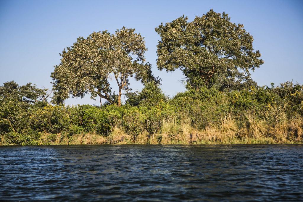 Lower Zambezi National Park, Zambezi