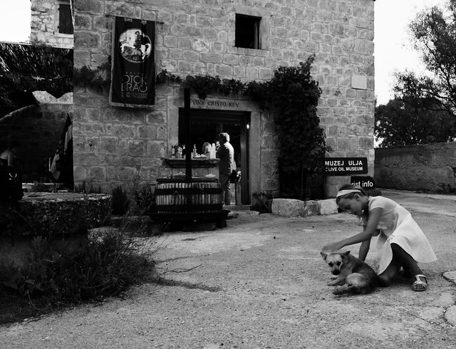 Olive Oil Museum