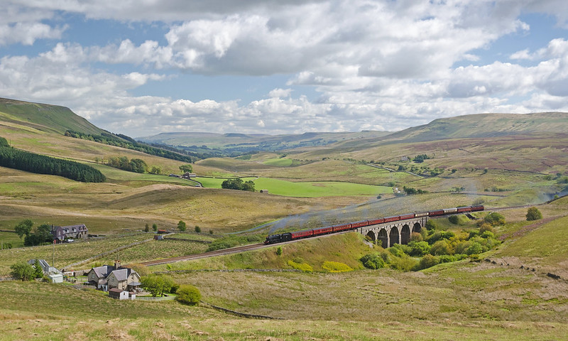 A view down Wensleydale from the hillside above Lunds Viaduct. Crossing the viaduct is the 'Waverley' excursion train of August 31st 2014, headed by 8F 48151. A Class47 diesel locomotive is bringing up the rear.