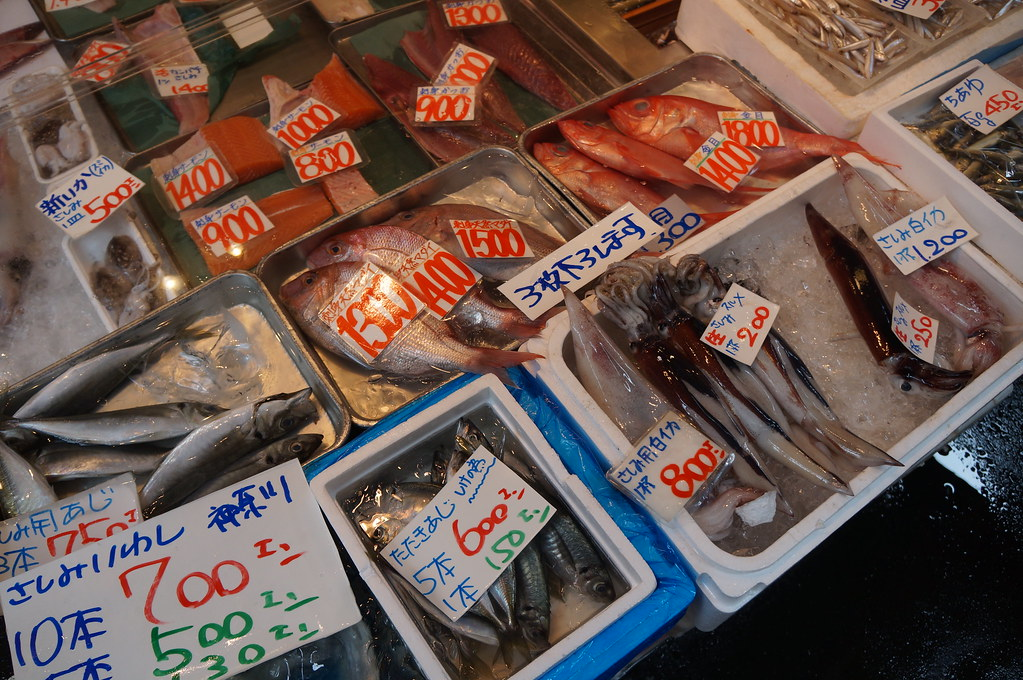 fishes in Tsukiji Fish Market