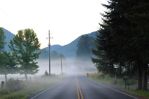 road morning fog sunrise