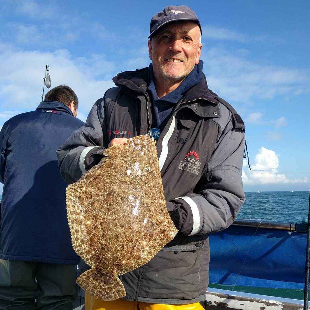One of three lovely Brill from John #amarisaweymouth