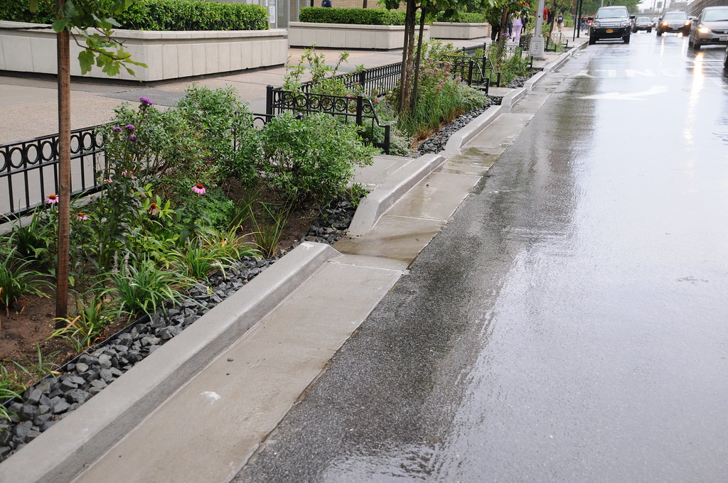 Rain Gardens, Rego Park, Queens