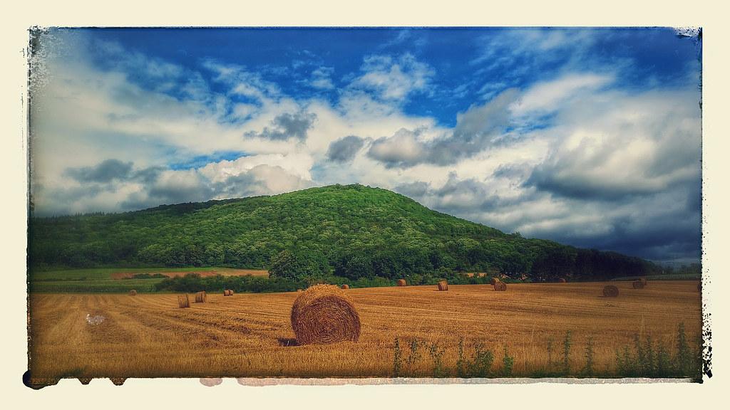 Harvest impression