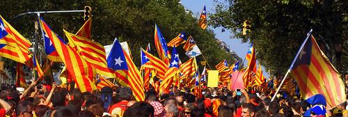 Diada Nacional de Catalunya 2014 - V
