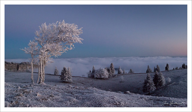 Ambiance glaciale...