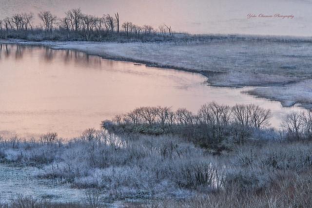 朝日に淡く染まる氷