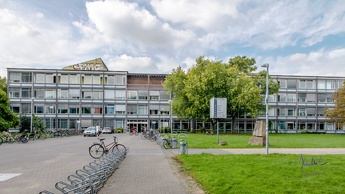 Faculty of Human Sciences
