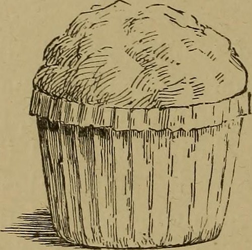 """Image from page 208 of """"Diet in illness and convalescence"""" (1899) 