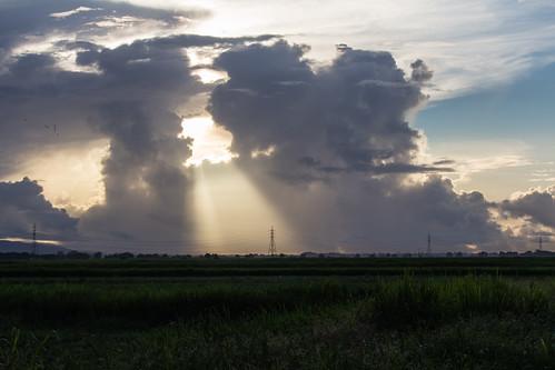 sky sun clouds sunrise landscape pylon trinidad electricity caribbean westindies trinidadandtobago caroni caroniricefields