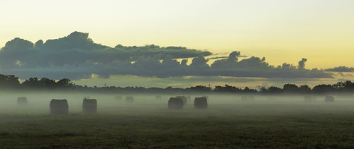 canon eos 6d texas outdoor color ef2470mmf28lusm landscape hayfield hay pasture fog sunrise naturallight art artistic