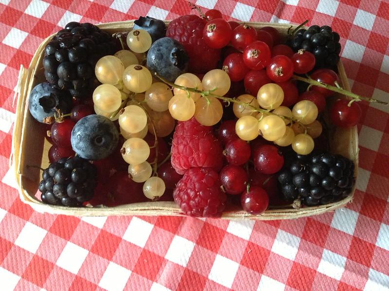Fruit rouges