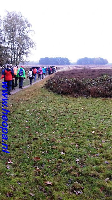 2016-11-09  Gooimeer tocht   25 KM   (153)
