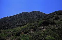 Троодос