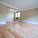 We could get lost in the views of these light hardwood floors throughout this Edison Park apartment.