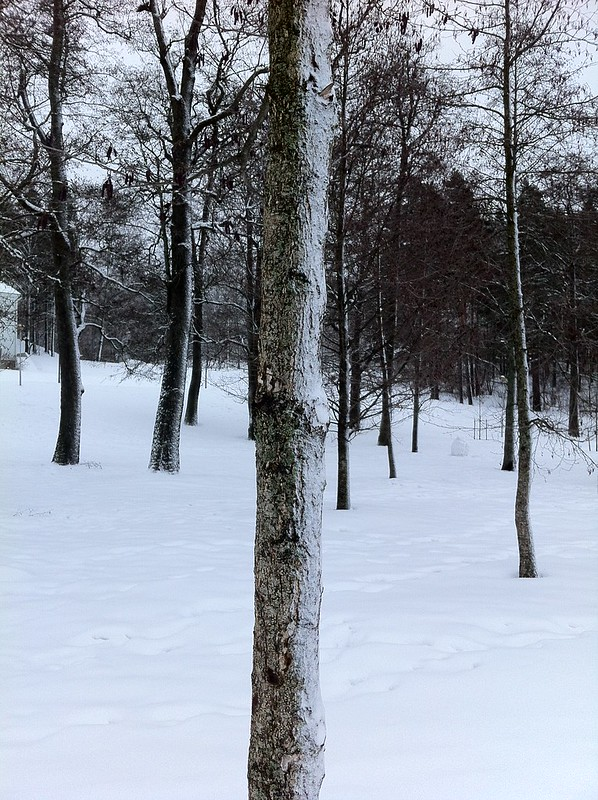 Lahti 2012