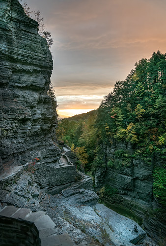 colors sony2470mmf28g cny landscape season nature newyork fall ny trees centralnewyork tompkinscounty tremanstatepark waterfall gorges forest scenic sonya7r2 outdoors luciferfalls traveldestination beautyinnature hiking ithaca sunrise dawn clouds sky