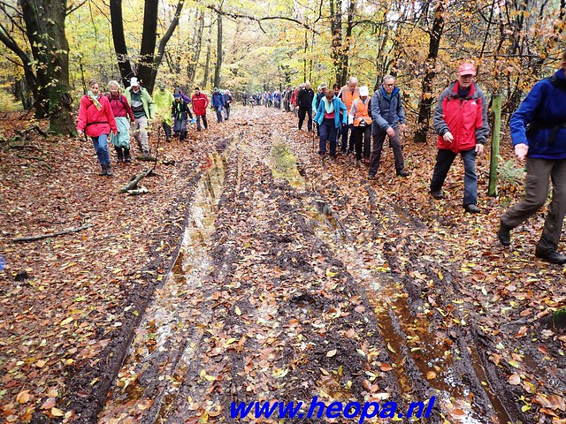 2016-11-16    3e Rondje-WolfHeze   25 Km  (58)