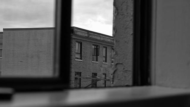 Open Window through an Open Window