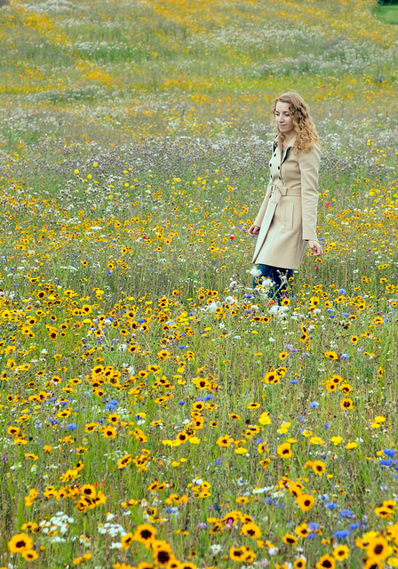 Lady in the meadow, Ickworth House, UK