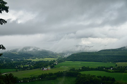 summer ny newyork green nature rain weather clouds insect outdoors nose day view farm moth farmland valley schoharie 2014 vronmans