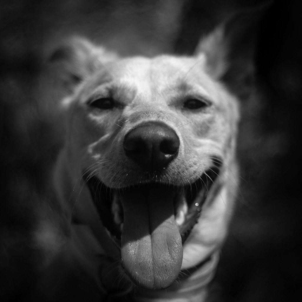 Myrtle Smiling