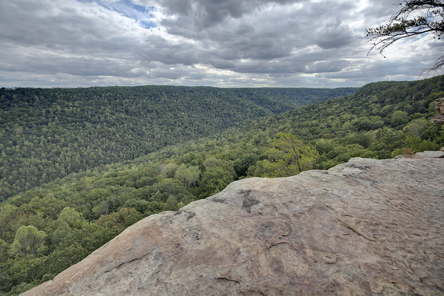 Stone Door overlook, Savage Gulf, Grundy County, Tennessee 1