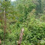 06 Viajefilos en Laos, Vang Vieng 046