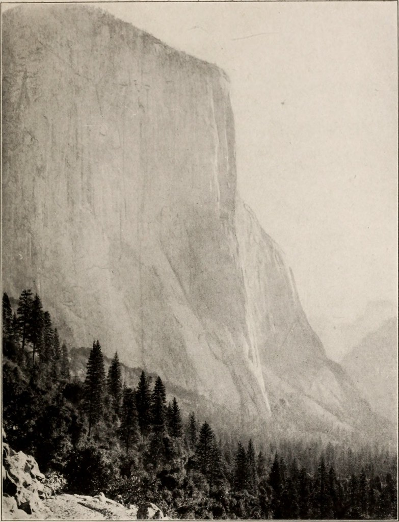 IMAGE FROM PAGE 76 OF THE BOOK OF THE NATIONAL PARKS 19 FLICKR