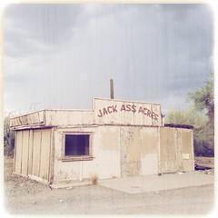 Jack Ass Acres