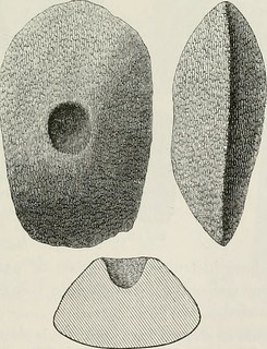 "Image from page 190 of ""The ancient stone implements, weapons, and ornaments, of Great Britain"" (1872) 