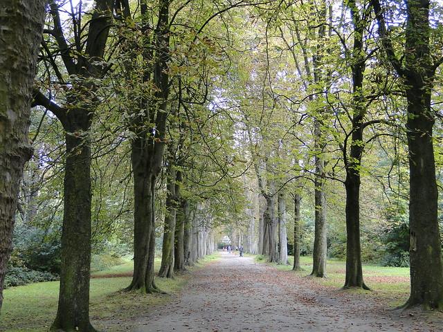 Park Vrijbroek in Malines