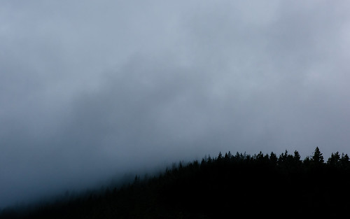 fog clouds nature landscape mysterious pacificnorthwest issaquah trees canon contrast pnw day canoneos5dmarkiii canonef2470mmf28lusm washington