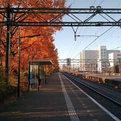 Station Laan van NOI in de herfst